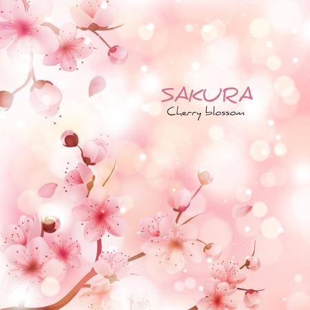 illustration sakura cherry, branch with blooming flowers, Japan flowers 向量圖像