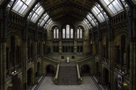 grecas: Londres Septiembre Septiembre 2012: El gran hall central del Museo de Historia Natural, decoradas con pinturas y calados de plantas y animales iluminadas por los rayos del sol 9 de septiembre de 2012.