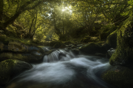Mountain river in a forest, Asturias, Spain Stock Photo
