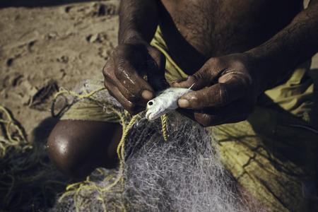 Fisherman taking a fish from the net, mumbai, India Stock Photo