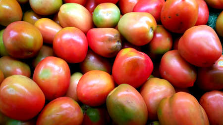 merah: Red Tomato Stock Photo