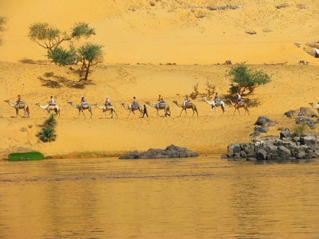 nile: Caravan in the dunes by the Nile river, Aswan, Egypt
