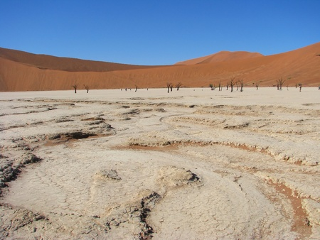 remoteness: Sun burnt land with dead trees in Deadvlei (Death valley), Sossusvlei, Namib-Naukluft National Park of Namibia