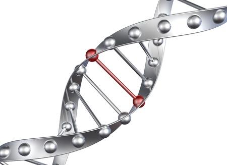adn humano: Metal Dnk estructura de color plata
