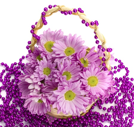 Oaklets in a basket on a beads on the white isolated background