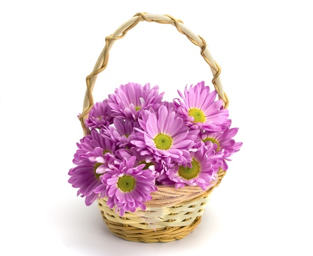 Oaklets in a basket on the white isolated background