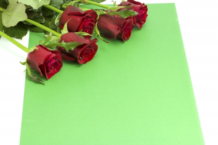 Bouquet of roses with dew on a green envelope on the white isolated background photo