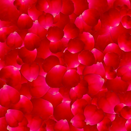 The texture of the petals of roses Vector illustration Illustration