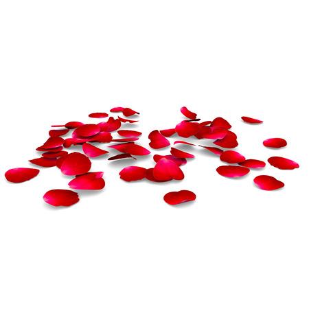 Bloemblaadjes van rozen vallen op een vloer. De geïsoleerde achtergrond