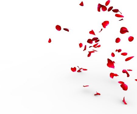 falling in love: Rose petals falling on a surface on a white background isolated