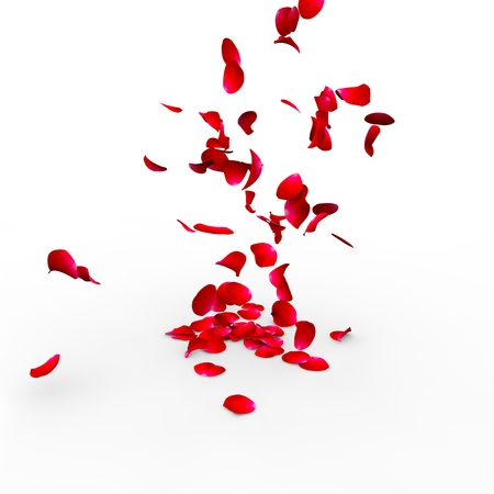 rose petals: Rose petals falling on a surface on a white background isolated