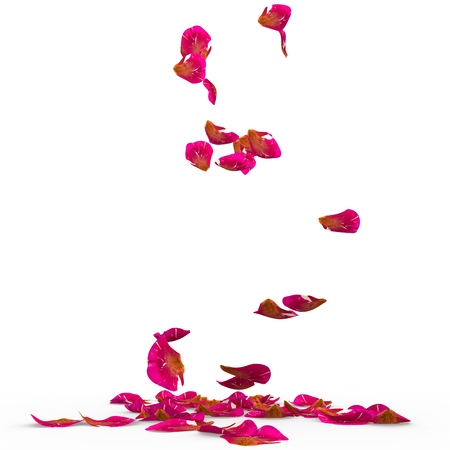 Rose petals speckled fall on the floor. Isolated background. 3D Render
