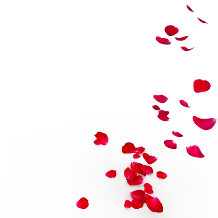 rosa vientos: Pétalos de rosas rojas están volando en el suelo. Fondo aislado. Render 3D