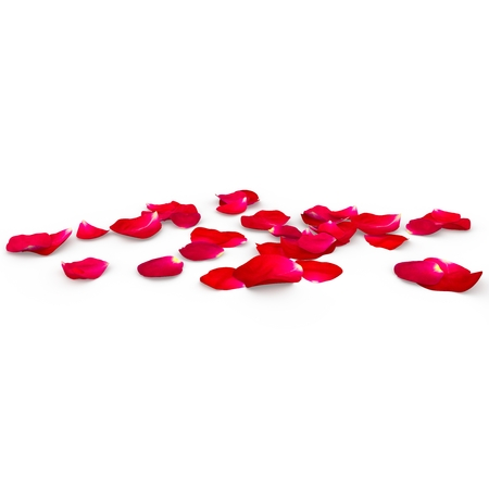 Petals of a red rose lying on the floor. Isolated background. 3D Render Zdjęcie Seryjne - 46054344
