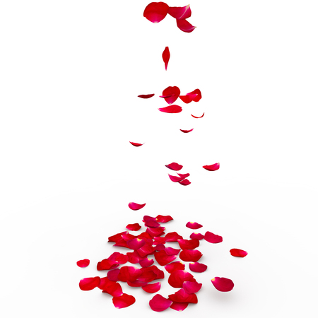 Red rose petals are flying to the floor. Isolated background. 3D Render Imagens