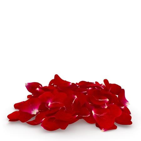 Petals dark red rose lying on the floor. Isolated background. 3D render Banco de Imagens