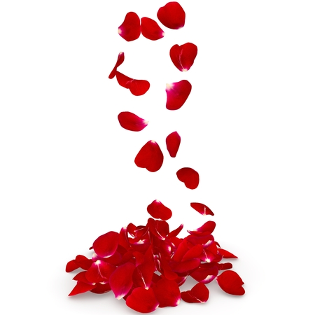 falling in love: Petals dark red rose flying on the floor. Isolated background. 3D render