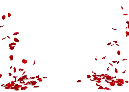 Rose petals fall to the floor. Isolated background. 3D render Zdjęcie Seryjne - 56382361