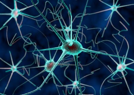 nerve signals: 3D illustration of a nerve cell. Scientific background