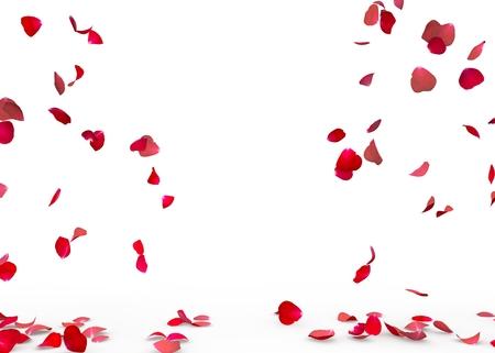 Rosenblätter fallen auf den Boden . Getrennter Hintergrund