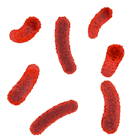Red bacteria inside the body on a white isolated background. 3d illustration Stock Photo