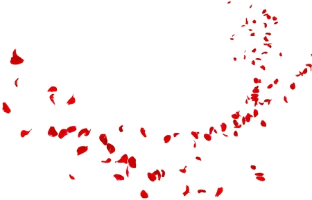 Red rose petals fly into the distance. Isolated white background