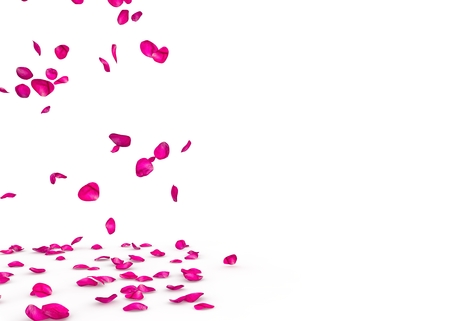 Purple rose petals fall beautifully on the floor. Isolated white background