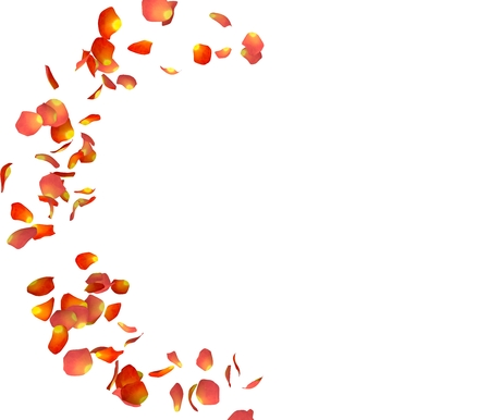 Orange rose petals fly in a circle. The center free space for Your photos or text. Isolated white background