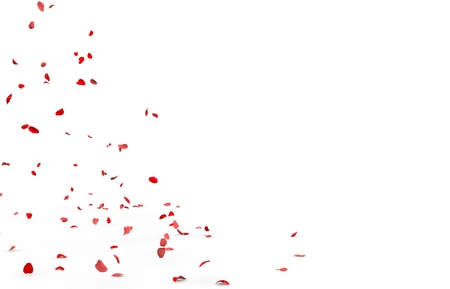 Small rose petals fly and fall to the floor. Isolated white background