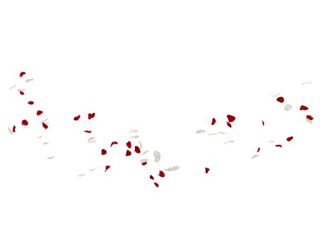 Red and white rose petals fall to the floor. Isolated white background Stockfoto - 128534400