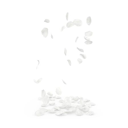 Rose white petals fly and fall to the floor. Isolated white background Stockfoto