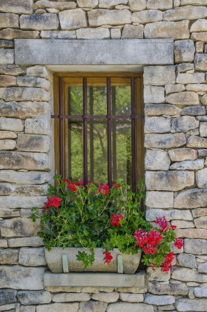 Window with a pot of bright red flowers