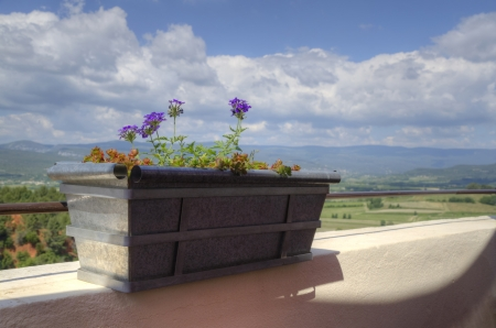 Flowerpot with fields and mountains in the background