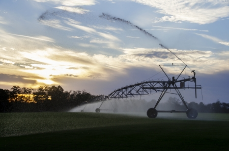 Irrigation sprinklers in operation at sunset Stock Photo