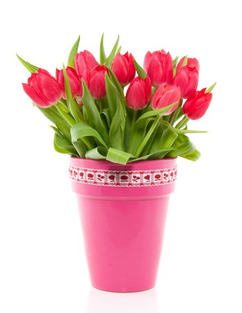 cheerful red bouquet  tulips in a wicker basket with ribbon isolated over white photo