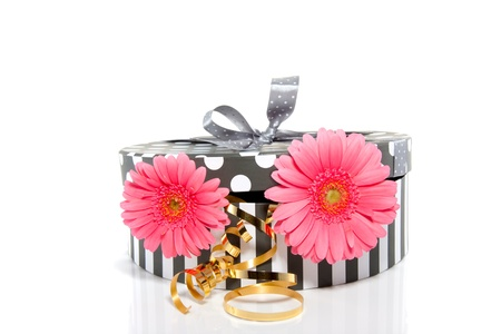 two pink gerbera in a grey white giftbox isolated over white Stock Photo