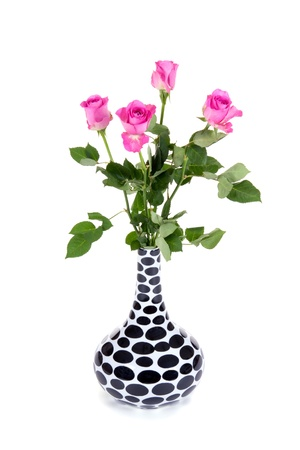pink roses in a black and white dotted vase isolated on white background photo