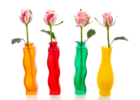 four single pink roses, in colorful glass vases isolated over white Stock Photo - 12040256