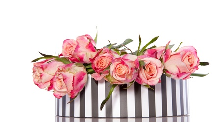 pink orange roses in a grey striped giftbox isolated over white