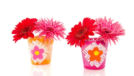 cheerful pink and red gerber flowers in two  little vases isolated over white background Stock Photo