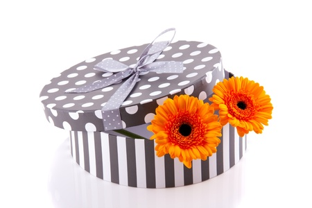two orange gerber in a grey white giftbox isolated over white photo
