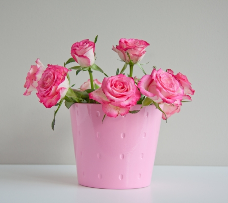white roses with pink edges in a pink vase against a light brown wall photo