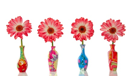 orange pink gerber flowers in colorful little vases isolated over white background Stock Photo
