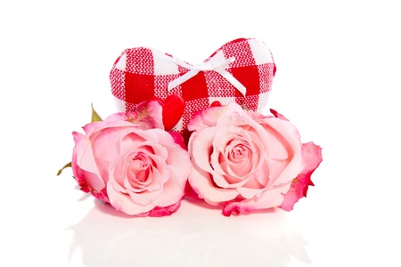 two pink roses in front of a lovely checked heart isolated over white