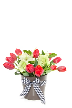a bouquet of red tulips and Helleborus in a brown flower pot isolated over white Stock Photo