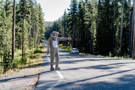Man in elephant costume hitchhikes Banco de Imagens