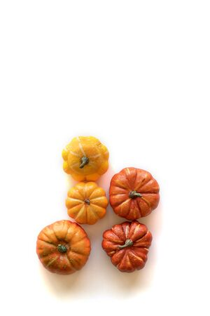 Thanksgiving background. Five pumpkins isolated on white.