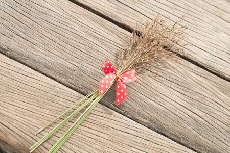 red polka dots: Hierba de la flor con lunares arco rojo Foto de archivo