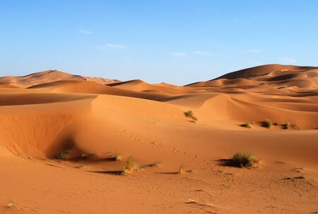 Shifting sand dunes of the Saharan desert as dusk near Erg Chebbi in Morocco Banque d'images