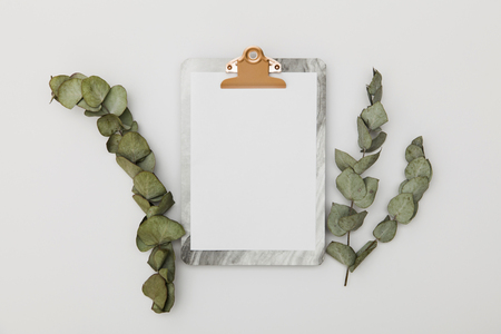Clipboard with blank paper mockup with eucalyptus leaves, top view